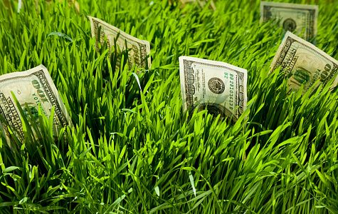 С 2019 года российский бизнес будет предоставлять «экологический» отчет